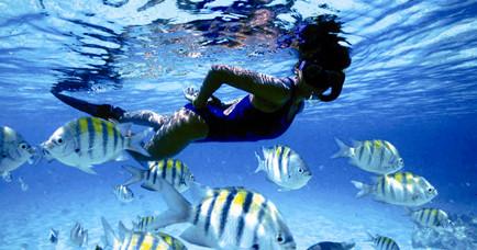 Барбадос жемчужина Карибских островов