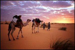 Что привезти из Мавритании