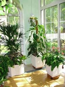Как украсить дом с помощью цветов
