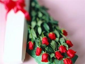 cvjety-dlja-milykh-dam---originalnyje-bukjety-ot-moscvjettorg