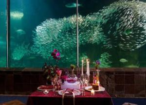 Как организовать самый оригинальный свадебный банкет в Санкт-Петербурге
