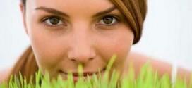Органическая косметика - красиво и безопасно