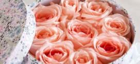 AmoreMio.by - цветочный интернет-магазин