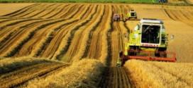 Интернет портал АПК украины. Здесь можно купить или продать семена